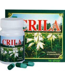 CRILA CRINUM Latifolium