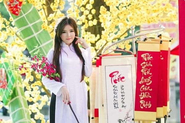 Vietnam National Costume Ao Dai