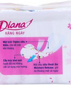 Diana Mesh Incense 2
