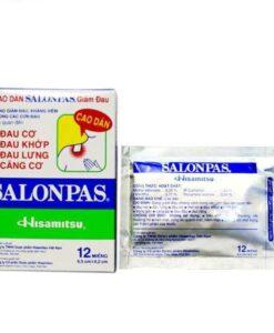 Salonpas Hisamitsu Patches Pain Relief